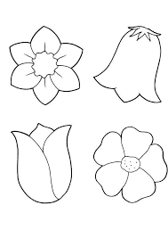 Flower Coloring Pages Pdf New Spring Flowers Coloring Printout