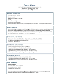 Resume Summary Examples For Information Technology Save Information