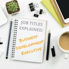 What Does A Business Development Executive Do