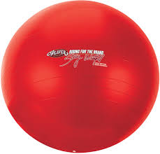 ball toys. stacy westfall large activity horse ball toy toys