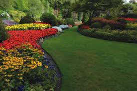 color garden. Garden Color C