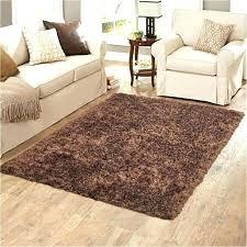 indoor outdoor carpet outdoor area rugs indoor outdoor rugs 5 gallery the most incredible rugs