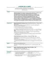 Resume Synopsis Examples Professional Summary Resume Summary