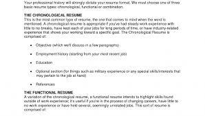 Great Resume Summary Simple Steps Lezincdc Com