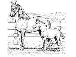 Horse Coloring Pages To Print For Free Color Pages Horses Race Horse