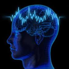El cerebro juega un papel principal en la audición | hear-it.org