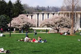 unc college essay application archives unc admissionsuniversity of  unca unc asheville sat scores acceptance rate more