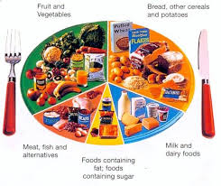 Pie Food Chart This Pie Chart Shows A Well Balanced Diet By Comparing