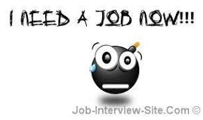 i need a need a job fast ideal vistalist co