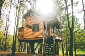 tree houses. Plain Tree And Tree Houses