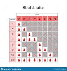 Blood Types And Donation Chart Blood Donation Chart Recipient And Donor Stock Vector