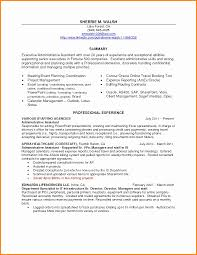 Modern Executive Assistant Resume 7 Executive Assistant Resume Skills Mael Modern Decor