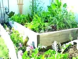 small space vegetable gardening s ideas garden small space vegetable gardening small space organic vegetable gardening