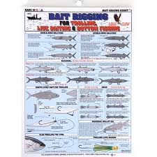 Rigging Chart Fishermans Bait Rigging Chart 1 Multi Colored