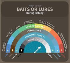 Bait Fishing Versus Lure Fishing Fix Com