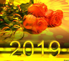 rose flowers happy new year 2019 greeting background