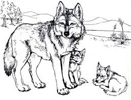Small Picture Wolf Coloring Pages Wolf Mother And Wolf Cub Coloring Page