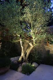 ideas for garden lighting. the 25 best garden lighting ideas on pinterest stage decorations and table for i