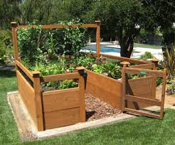 Small Picture Above Ground Garden Box 17 Best Images About Pictures Of Raised