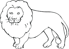 Wild Animals Coloring Pages Printable Wild Animal Coloring Book