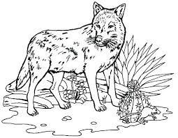 Winged Wolf Coloring Pages Free Winged Wolf By Doctor Dragon Winged