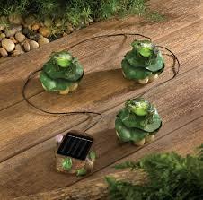 Amazoncom  Regal Art U0026Gift Solar Mushroom Stake Frog Garden Solar Frog Lights