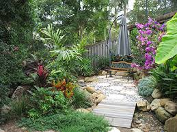 Small Picture Palms For Brisbane Small Tropical Garden Room
