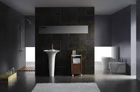 Image of: Dark Themes Modern Toilet Bathroom