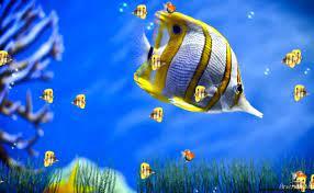 download aquarium live wallpaper for ...