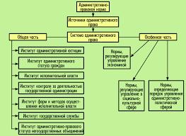 Понятие виды и особенности административно правовых норм реферат Виды административно правовых норм