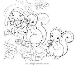 Disegno Scoiattolo01 Animali Da Colorare