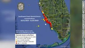 Red Tide Is Back Off The Coast Of Florida Residents Arent