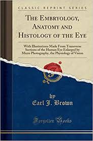 the embryology anatomy and histology of the eye with ilrations made from transverse sections of the human eye enlarged by micro photography