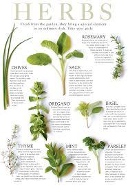 65 You Will Love Fresh Herb Chart