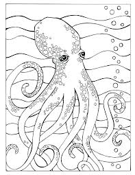 Fresh Ocean Color Sheets Habitat Coloring Pages Best Ideas Of Free