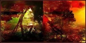 <b>Montale Patchouli Leaves</b>: Caramel Praline Patchouli - Kafkaesque