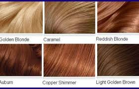 copper brown hair color chart 253391 top 2 celebrity sombré hair colors 2016 spring dark brown