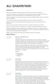 Examples Of Engineering Resumes Beauteous Director Engineering Resumes Funfpandroidco