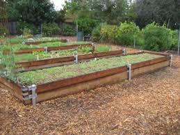 fohc raised vegetable beds sacramento mgs
