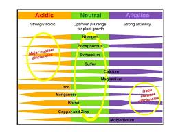 Ph Chart Soil Glendance