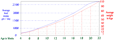 Pig Growth Chart Pig Growth Rates Feed Trough Requirements