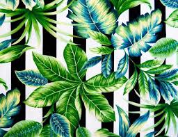 tropical leaf palm outdoor curtain