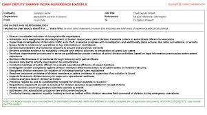 Chief Deputy Sheriff CV Work Experience