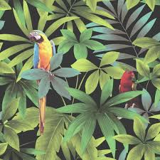 tropical jungle wallpaper muriva wallcoverings lancashire