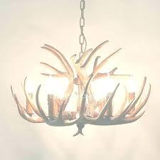 small deer antler chandelier white antler chandelier small antler chandelier deer chandeliers for within view small deer antler chandelier