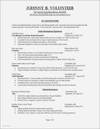 Resume Examples For Safety Supervisor Awesome Amazing Security