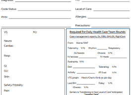 Nursing Shift Report Template The Ultimate Nursing Brain Sheet Database 33 Nurse Report Sheet