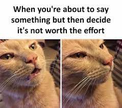 dopl3r.com - Memes - When youre about to say something but then decide its  not worth the effort