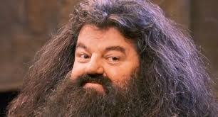 Image result for images of robbie coltrane as hagrid