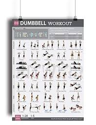 Body Fitness Chart Dumbbell Exercise Workout Poster For Women Laminated Exercise For Women Leg Arm Exercises Home Gyms Fitness Chart Resistance Training